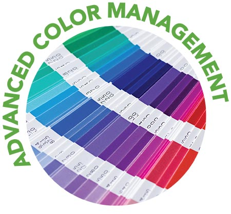 advanced color management icon featuring color swatches